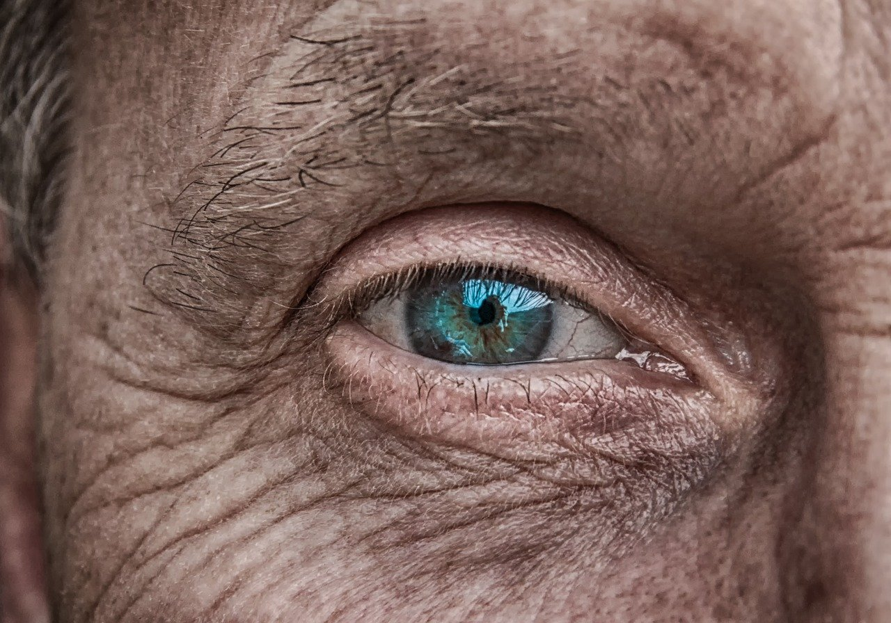 Reversing the Signs of the Ageing Process